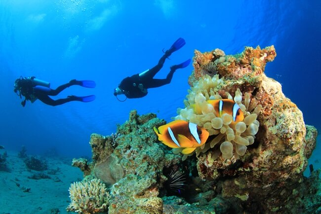 things to do in mergui archipelago 3